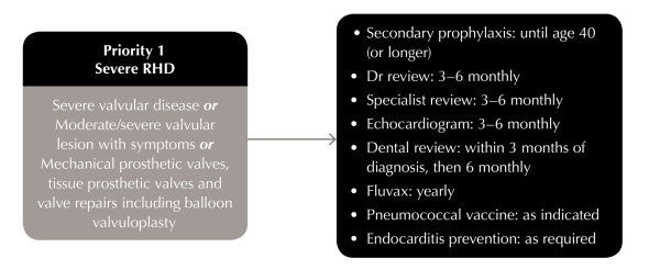 Guideline to rheumatic heart disease