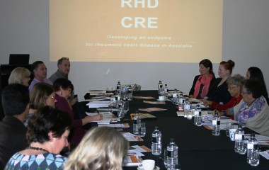 END RHD CRE Investigators meeting