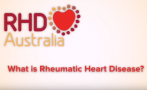 Hosted by Charlie King, OAM, this panel was held in Darwin in 2016. It includes discussion from experts, people with RHD and carers in a question and answer style presentation.
